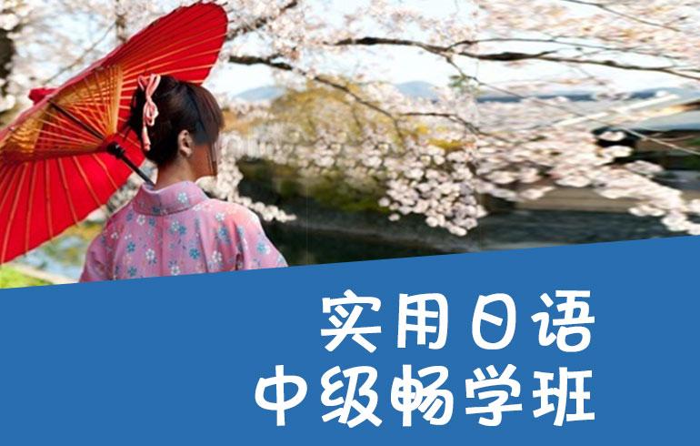 实用日语中级畅学班